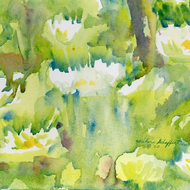 Holmes Lake plein air138 watercolor.jpg