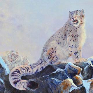 Snow Leopard_Acrylic