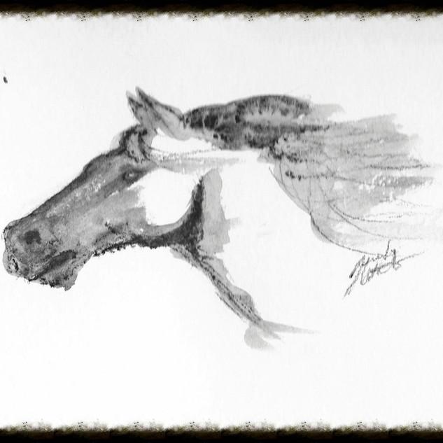 Horse #3 Series of three