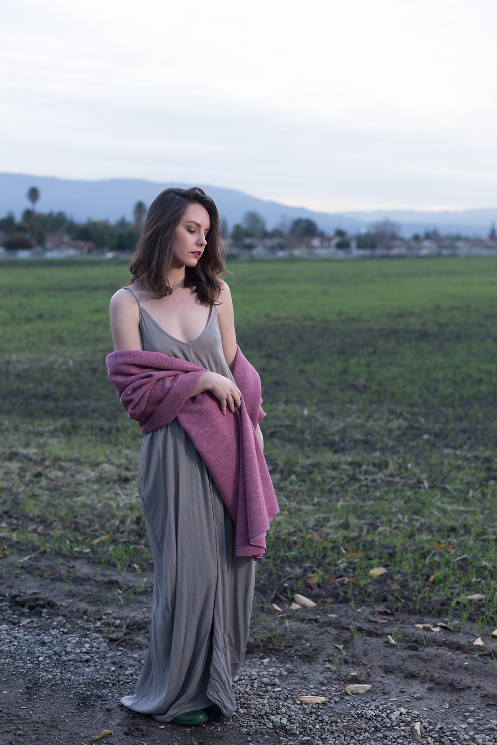 A photograph of the model in a field during sunset