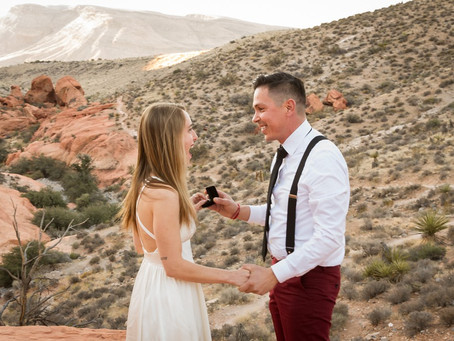 Surprise Proposal   Red Rock Canyon, Las Vegas