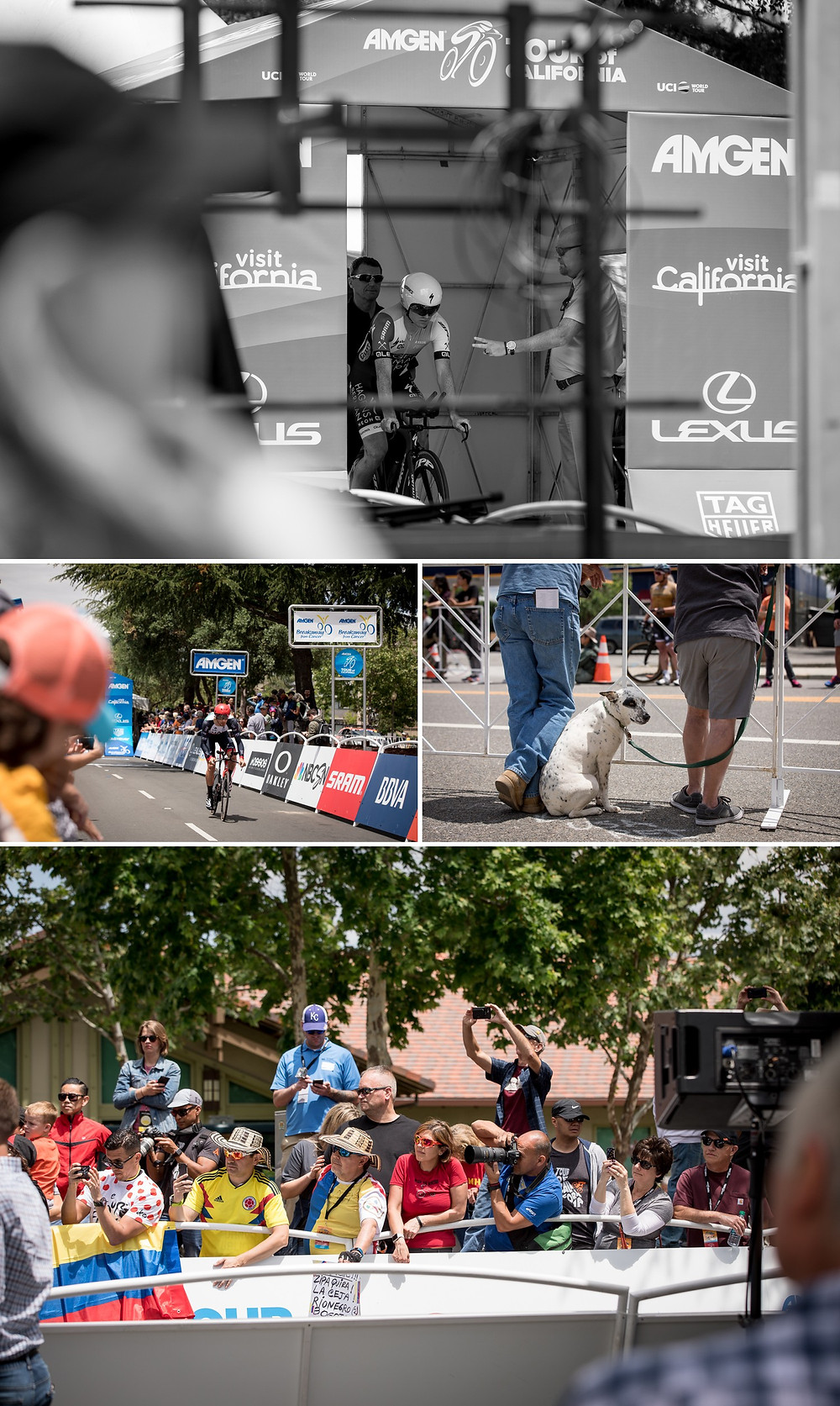 The AMGEN tour start line in downtown Morgan Hill.