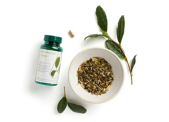 Pharmanex Tegreen (30 Kapseln)