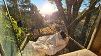 Cabana na Árvore
