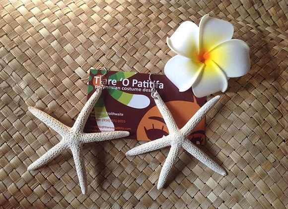 Authentic Starfish Shell Earrings