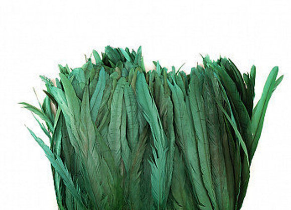 Green Rooster Coque Tail Feathers