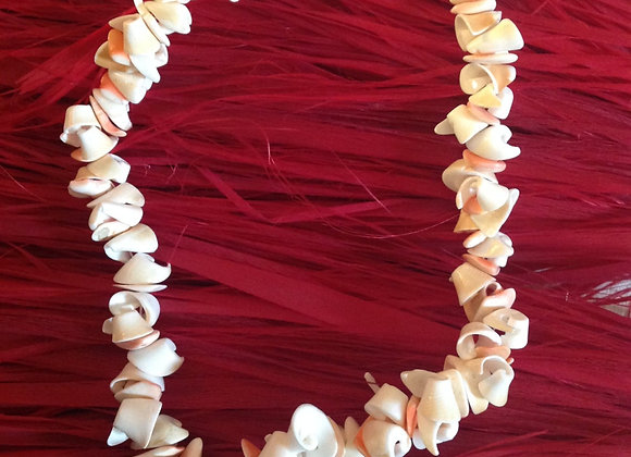 Natural Sea Shells Necklace