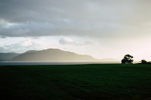 Scottish Hill in Mist