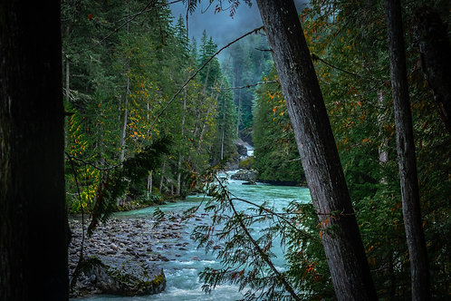 Soo River through the trees British Colombia Canada