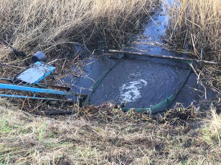 Netz hinter dem Auslauf, hierdrin sammeln sich die Fische