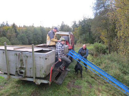 Transportfahrzeug mit 1000 l Fässern