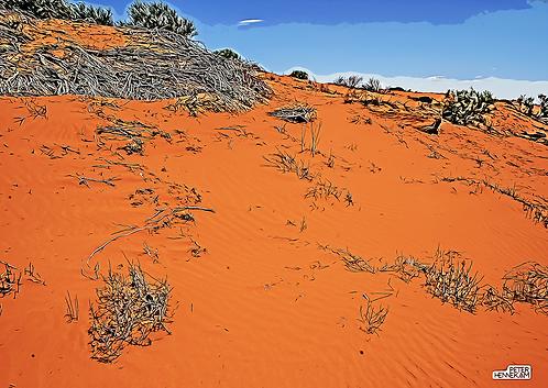 LS028 - Sand Dune