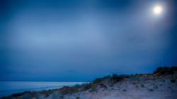 Lake Eyre Moonlight