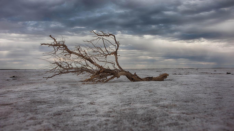 Lake Eyre 002