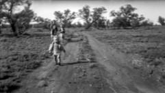 1955 STR_8822_DXO - 72 dpi.jpg