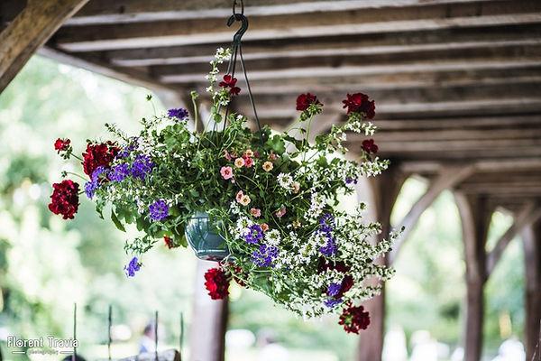 Fleurs pendues sous la Grange