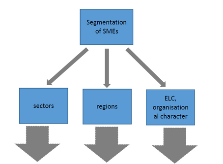 D3.1 Report on functional elements in analysed methodologies of segmenting SMEs