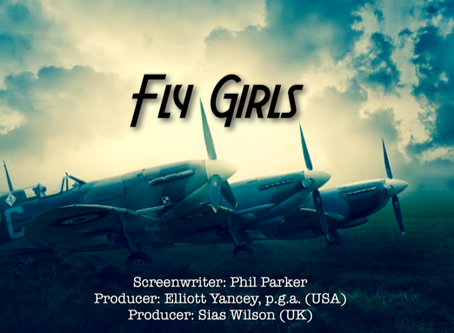 More Great Reviews for 'Fly Girls' Script