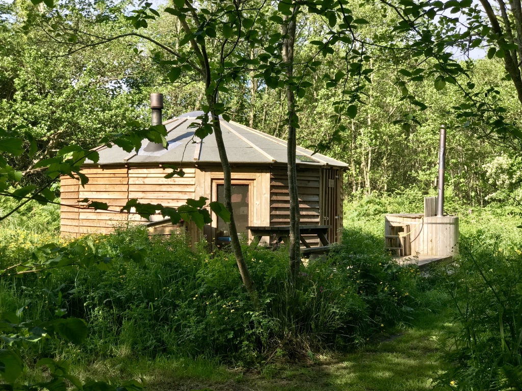 Robin's Nest Yurt