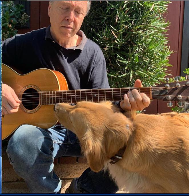 beginners guitar