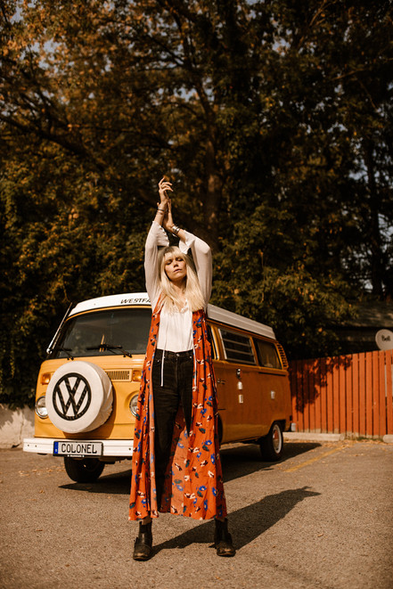 hippy motors