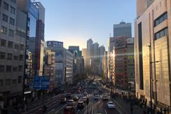 Shinjuku city skape