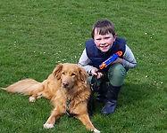 dog-951404__340.jpg