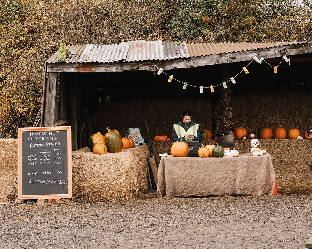 Rutland Pumpkins at Raddlemans