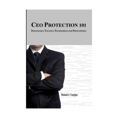 CEO Protection 101