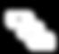 white-Vizcon-logo 2.png
