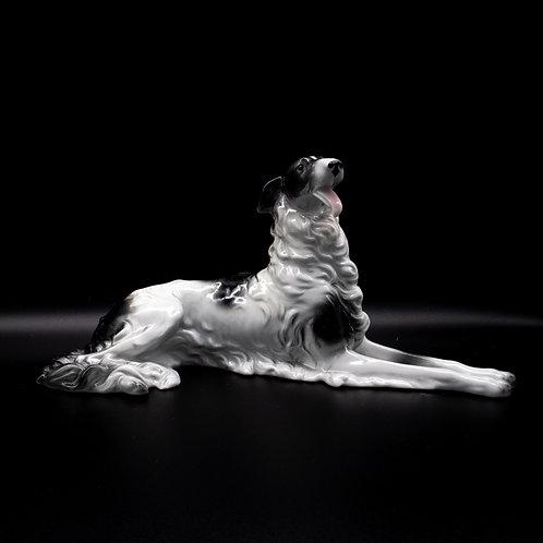 Liegender Barsoi Hund, Vorderansicht