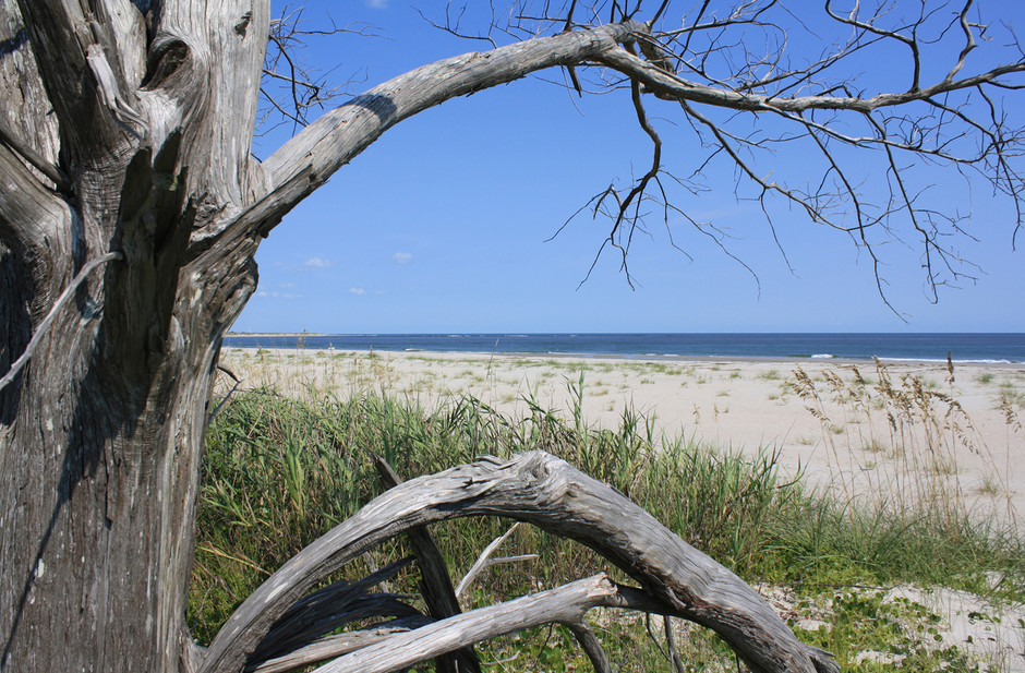 Horizon | Ocean Isle Beach, NC