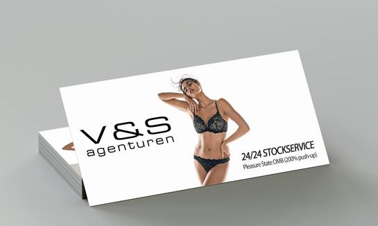 v&s-flyer.jpg