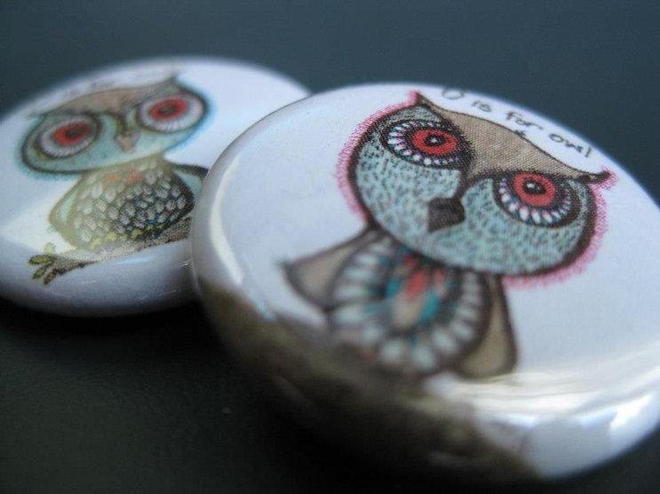 small-owl.jpg