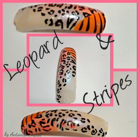 Leopard and Tiger Print Nail Art
