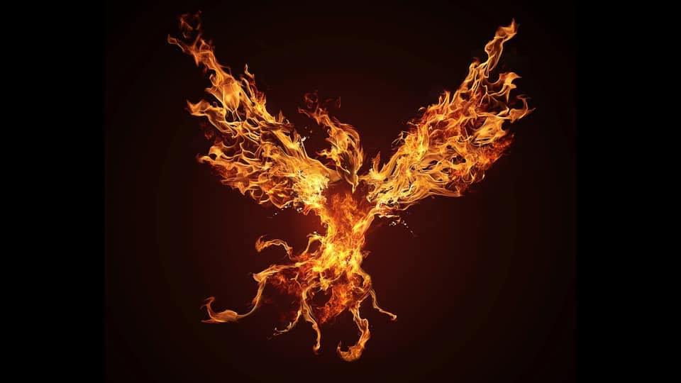 phoenixblack1.jpg