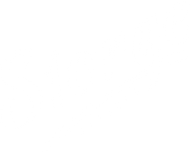 STORGE CAPITAL.png