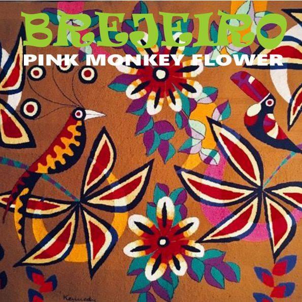 BREJEIRO   lançado novo E.P. do Pink Monkey Flower   na JUNO.UK