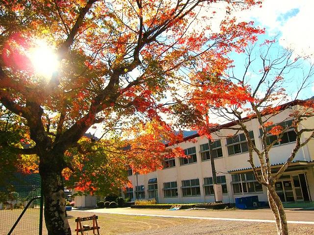 紅葉と校舎加工.jpg