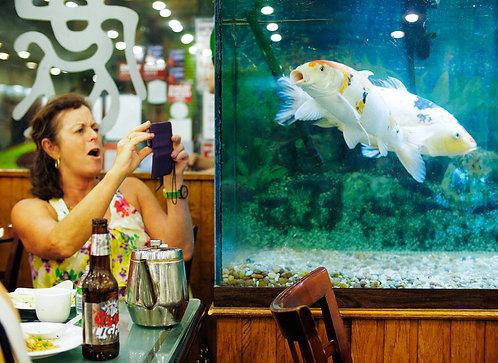 Fish Lady  (11x14)