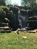 Pippa waterfall.jpg