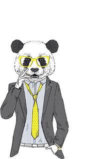 panda graphic deigner