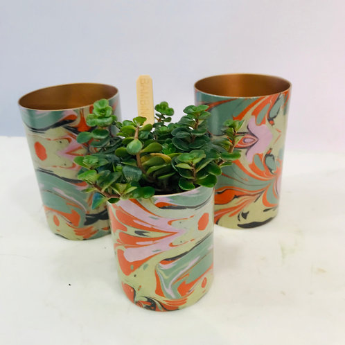 Trio SERAX theelichten en plantje