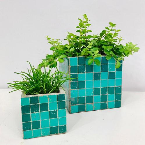 Duo van fris groen in design van Serax