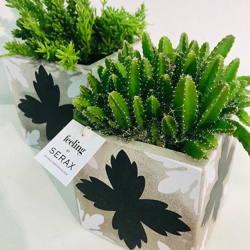 Duo SERAX en groen - Design by Marie Michielsen