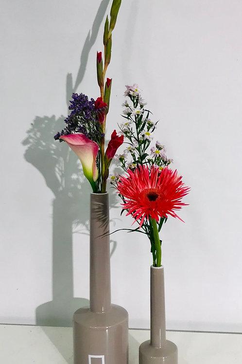 Duo SERAX Pantone incl snijbloemen