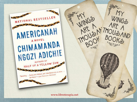 "Segna-Libri: ""Americanah"""