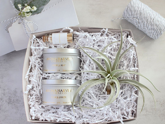 Candle Tins & Large Air Plant Gift Box Set