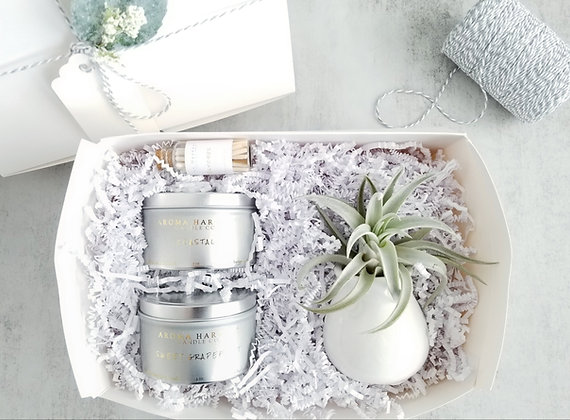 Candle Tins & Air Plant Gift Box Set