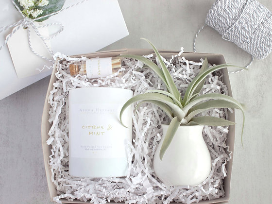 Candle & Air Plant Gift Set Box